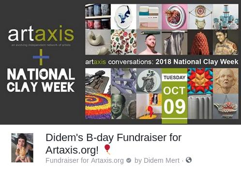 Didem Mert's Facebook Birthday Fundraiser