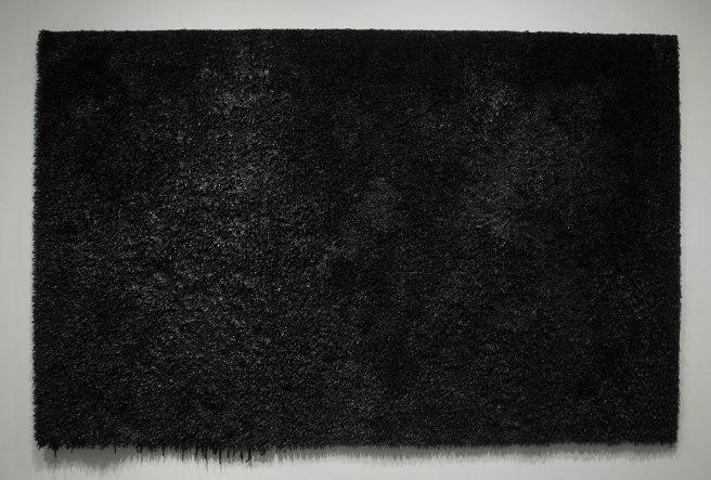 latex paint, polyethylene, 11 ft x 7 ft, 2012