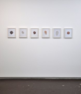 Installation shot, Inkjet print, ashwood, 2015