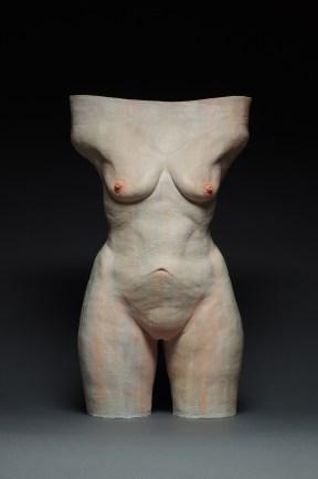 "Phoebe Scott, ""See example: (Figure 2, torso)"""