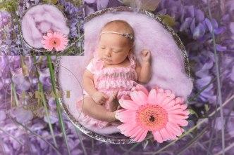 fond numérique digital background art baby créative (3)