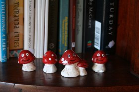 Happy little mushrooms bring cheer to the store as they peer off the shelves with smiles for all.