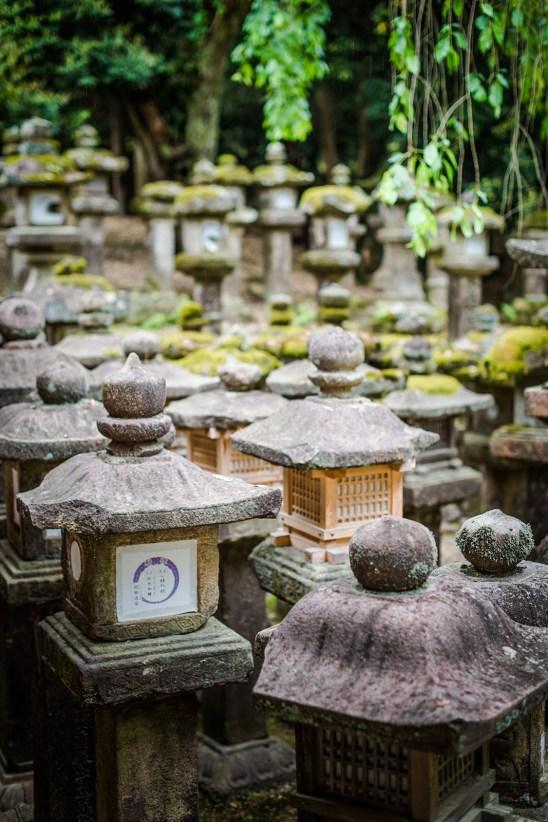 Kasuga-dōrō (Japanese stone lanterns) along Mizuya Sharine, Nara