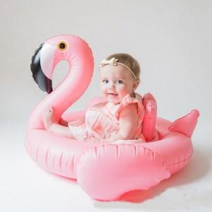 Flamingo Swan Baby