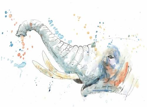 Splashy Elephant