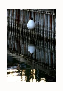 Photo Art Print Poster - Reflection