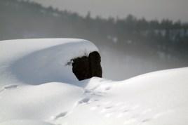 High Coast/Holmen/Kläppa - Winter Day