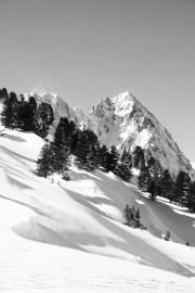 France / Chamonix - Winter wonderland I