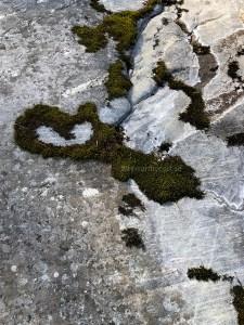 High Coast / Sandlågan - Shape of My Heart