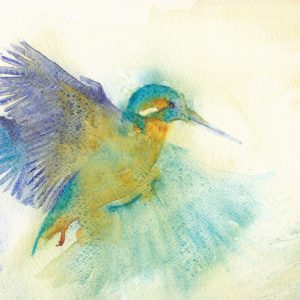small art print of a Hovering Kingfisher