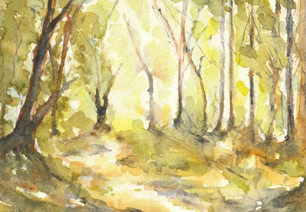 Ancient Pathways - mounted watercolour in the Ancestral Woods Collection