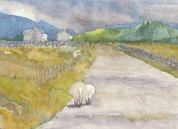 Rush Hour in Connemara is a watercolour painting of two sheep wandering along an empty country road towards two cottages in the mountains.