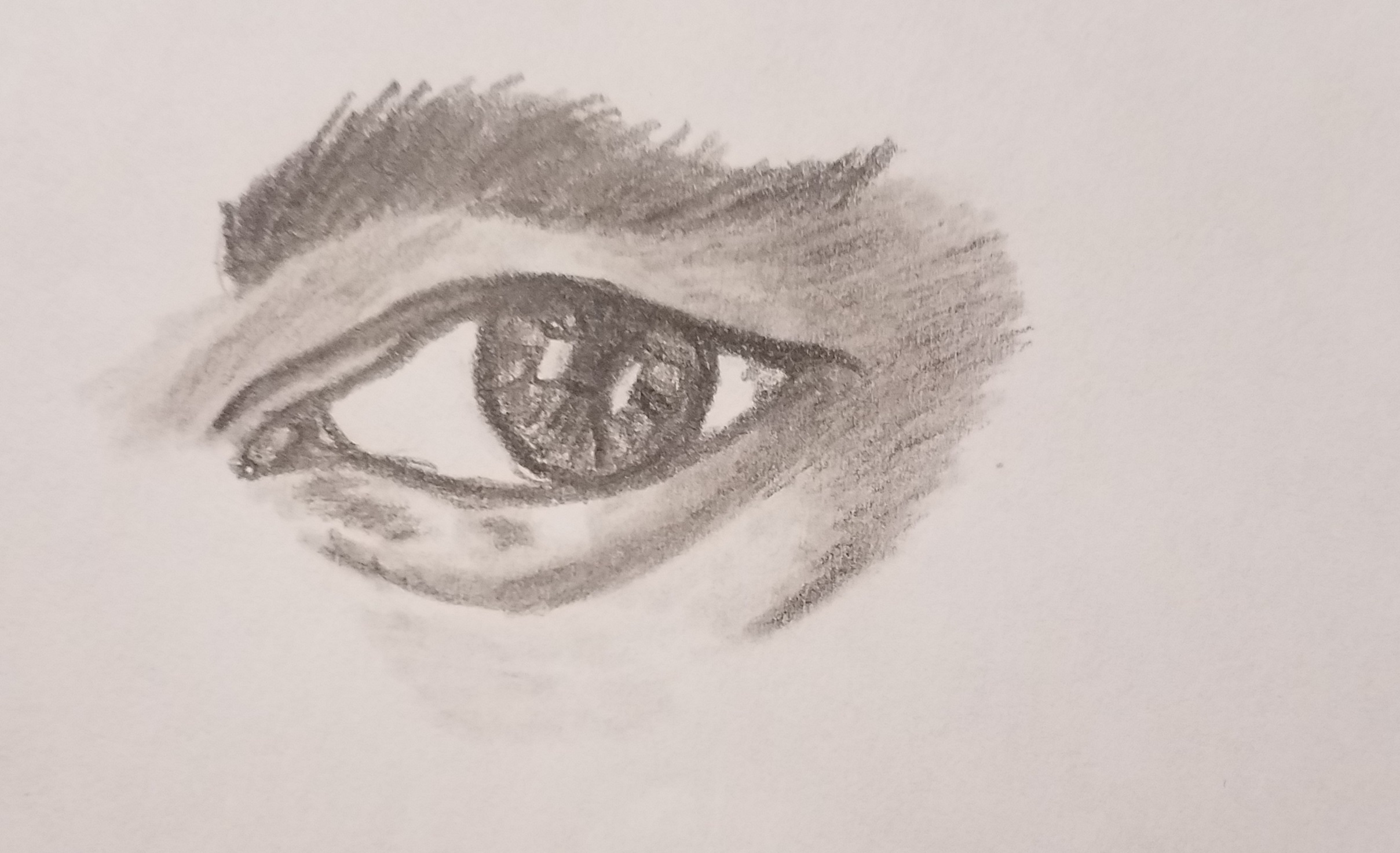 How to draw eyes for beginners art by ro