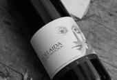 adelaida-cellars-paso-3