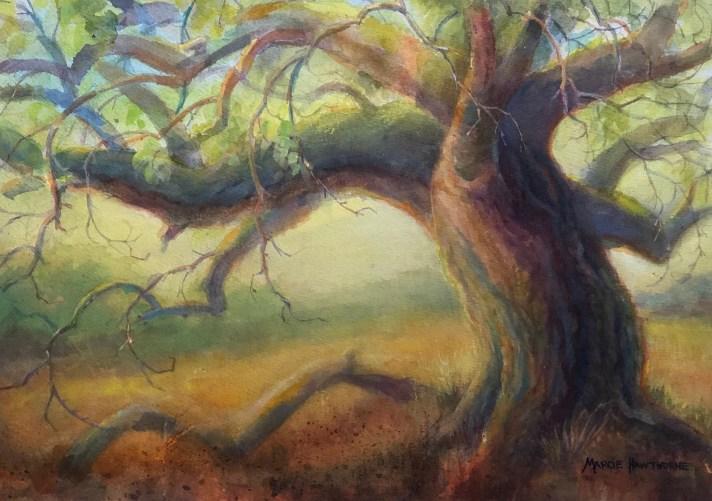 Marcie Hawthorne - Oak Torso in Morning Light Send