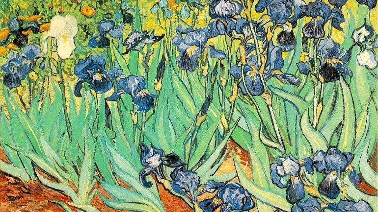 New Vincent van Gogh Investigation Probes His Heart and Art