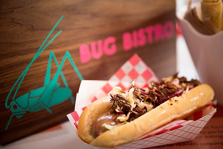 Image: Hotdog with crickets is one of the very popular bug delicacies at the Canadian National Exhibition