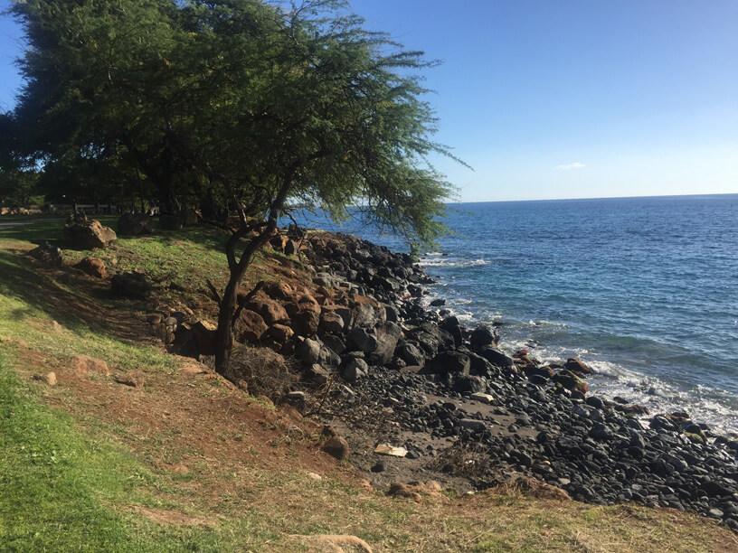 Maui walk