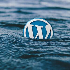 website security, wordpress