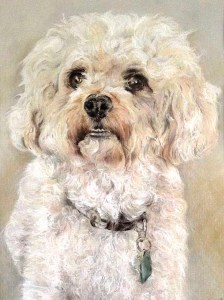 beginners art class, merseyside, ormskirk, lancashire, also commissioned portraits