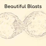 Beautiful Blastocyst