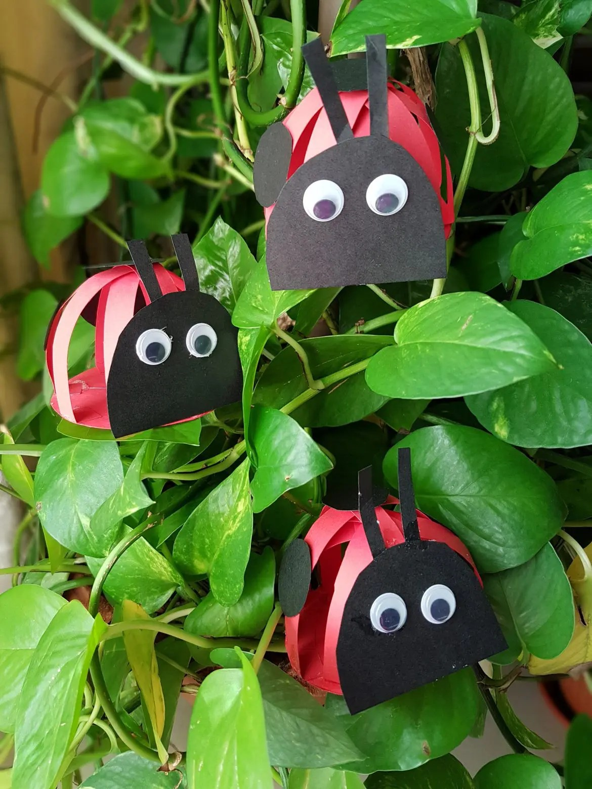 Easy Paper Grouchy Ladybugs Crafts