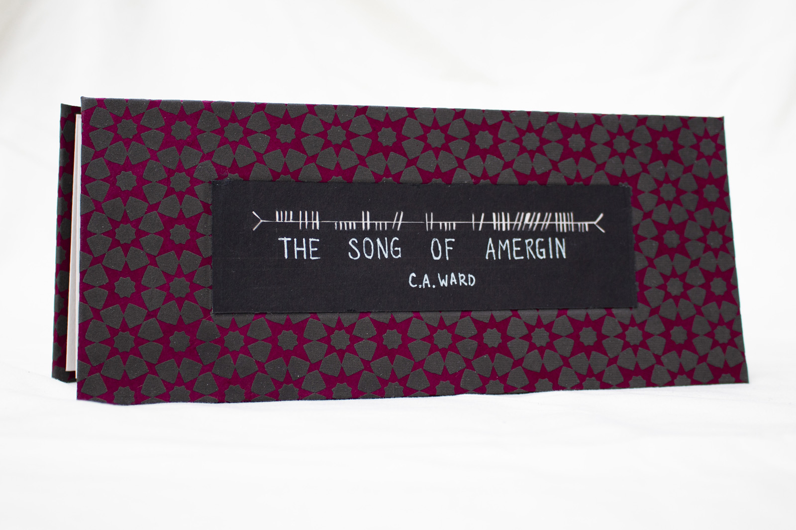 The front cover of a handmade carousel book. It's titled The Song of Amergin by C. A. Ward.
