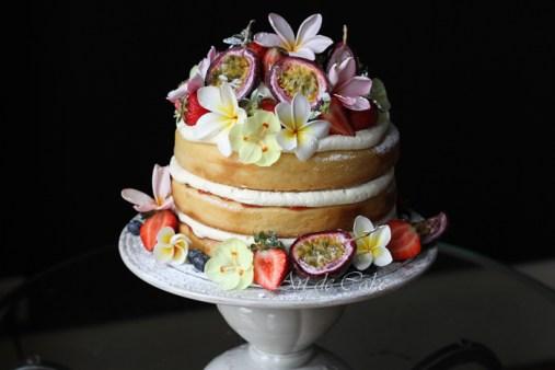 egg-free sponge layer cake
