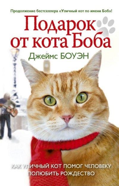 realnye-istorii - Подарок от кота Боба. Как уличный кот помог человеку полюбить Рождество -