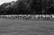 All In: Shorewood Girls Cross Country, Junior Varisty Race, Arrowhead Meet, 2015