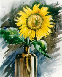 Sunflower, 60x50 cm, watercolor