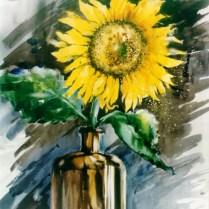 Sunflower, 60x50 cm, watercolor