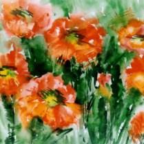 Poppies, 50x70 cm, watercolor