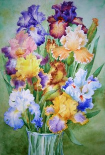 Irises, 50x30cm, water colour