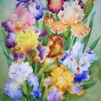Irises, 50x30 cm, watercolor