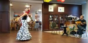 Flamenco optreden Humanitas