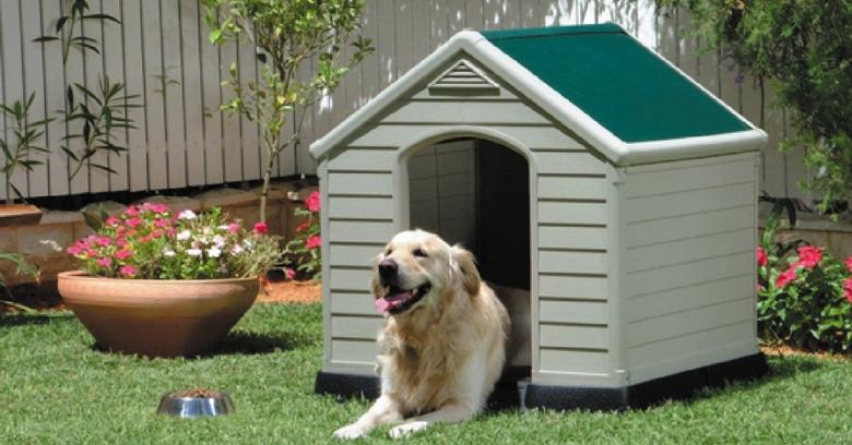 Conhecido Como fazer uma casinha de cachorro? 3 passos simples que vão te ajudar LJ76