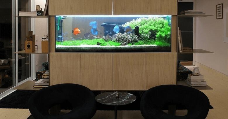 moveis para aquario 2