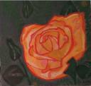 Couleurs de roses, 2014
