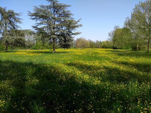 Parco Urbano Ferrara Aprile 2018