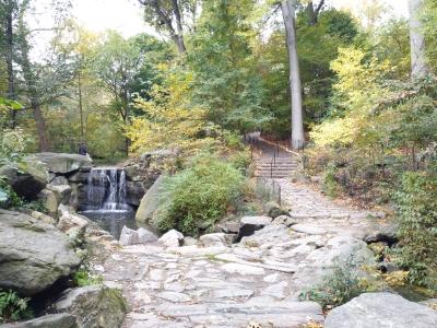 Cascada en el norte de Central Park
