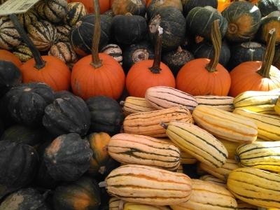Venta de verduras en el mercadillo de Union Square