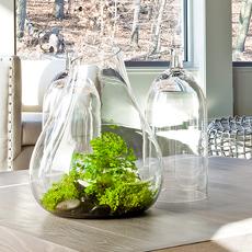 blown glass terrarium and long neck cloch