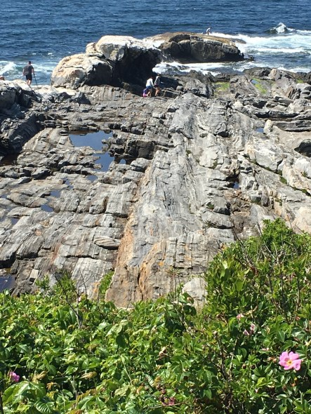midcoast pemaquid