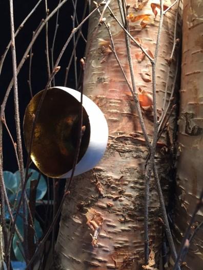 birch log, twig, pod 2