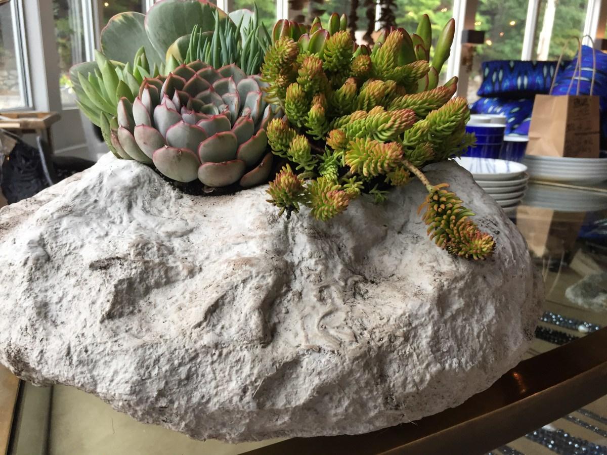 succulents-alpine bowl I-autumn 2017.1