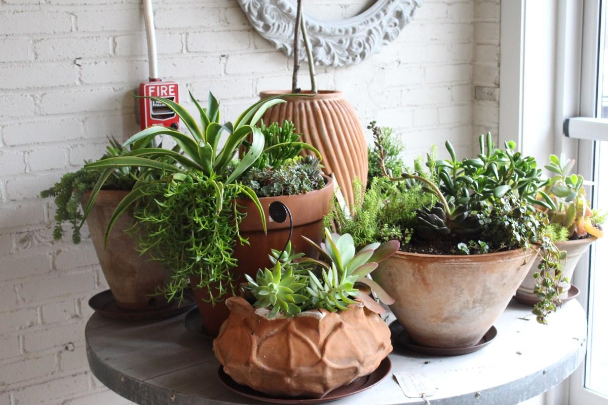 table of aged terra cotta planters-campo de fiori@artefacthome