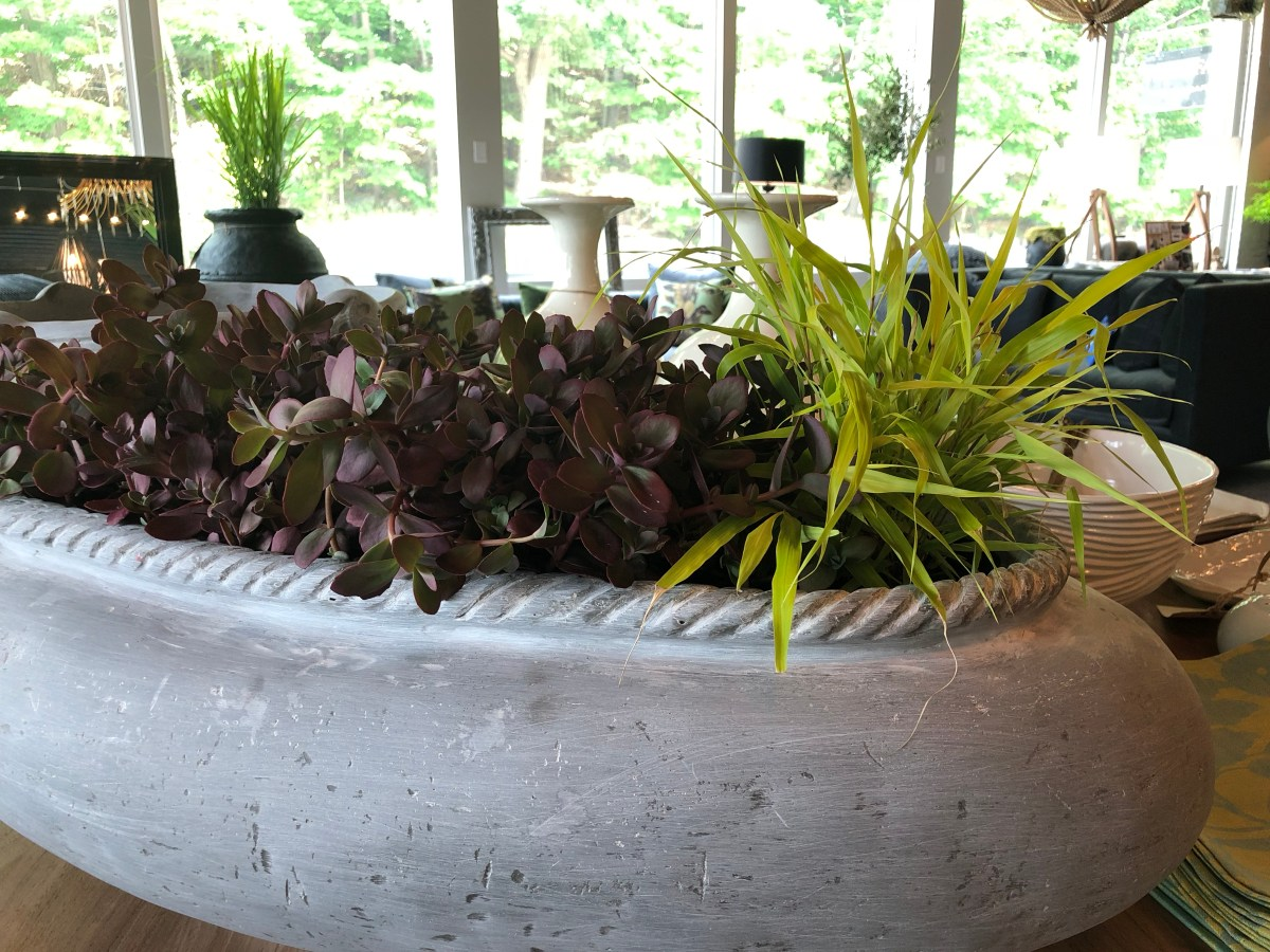 rope edge oval planter-dragons blood sedum-hakonechloa all gold-pennoyernewman@artefacthome
