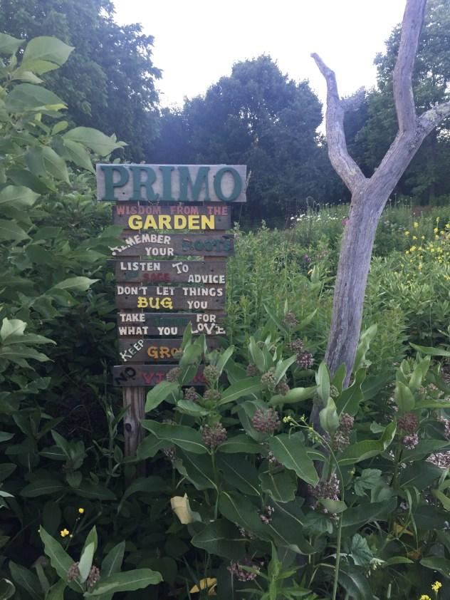 primo garden 1