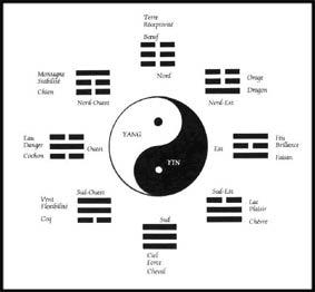 ying.jpg
